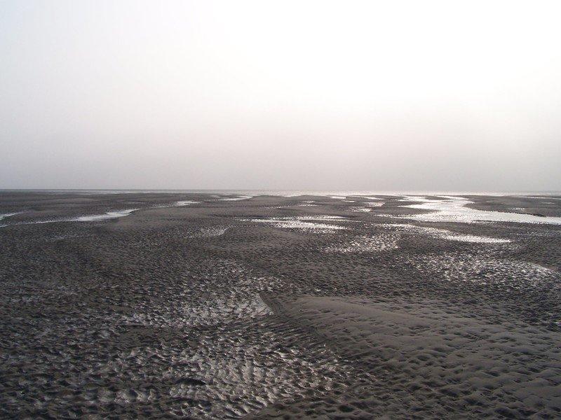 Sandbar in the Westerschelde